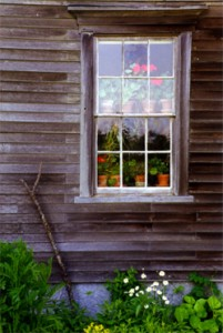 Olson House Window