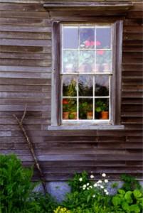 Olson House Window